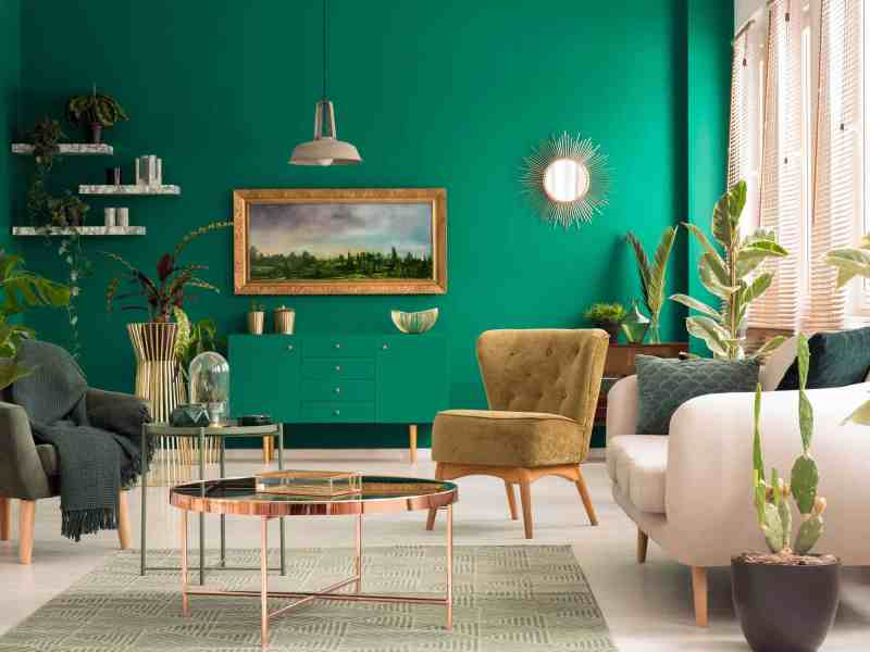 Green living room interior