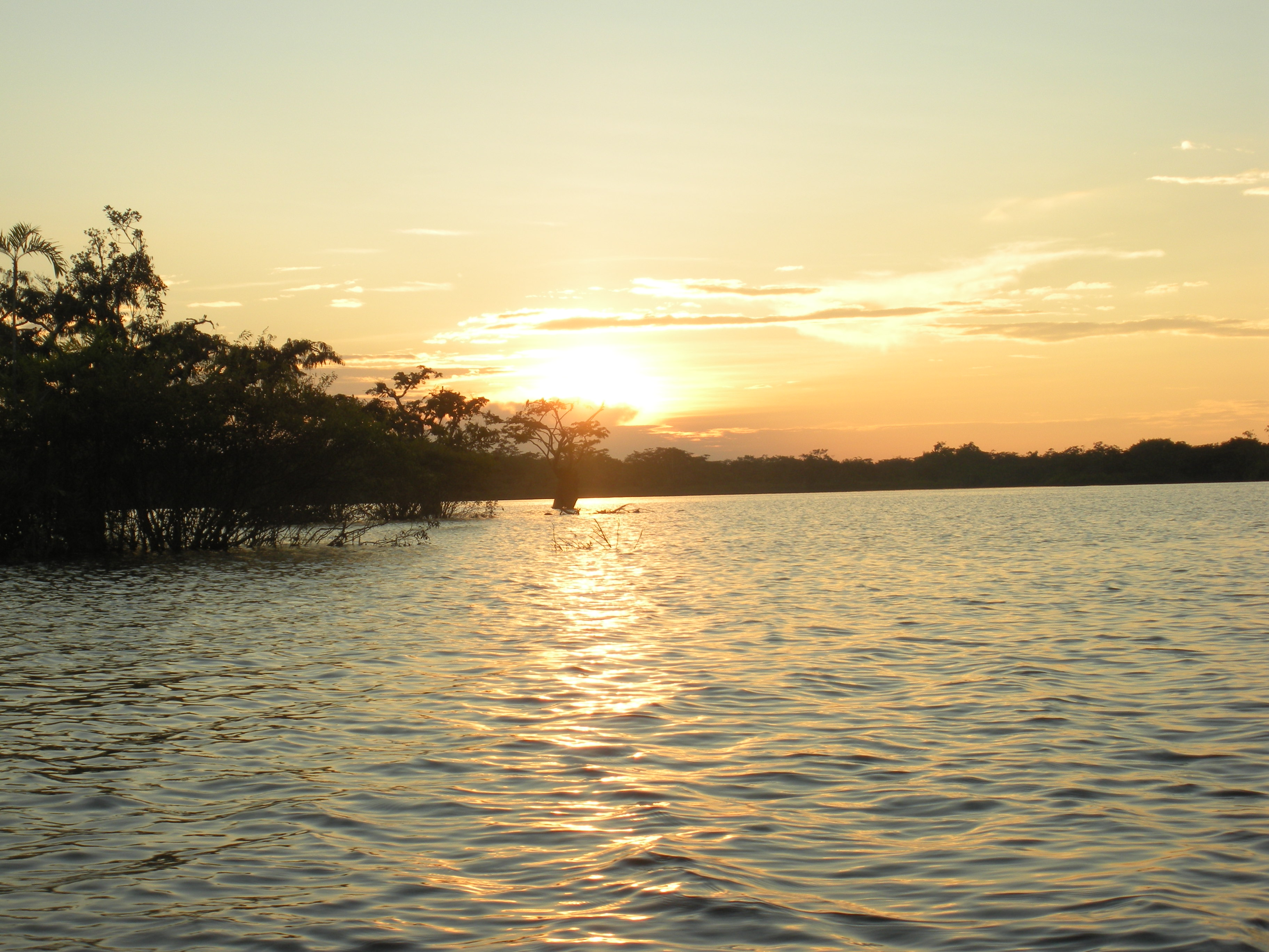 A Walk On The Amazon River Day 1 Of 5 Budget Adventure