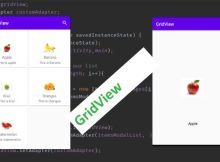 gridview with cardview