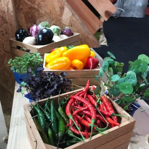 Seasonal Produce
