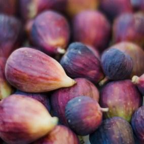Figs in season.