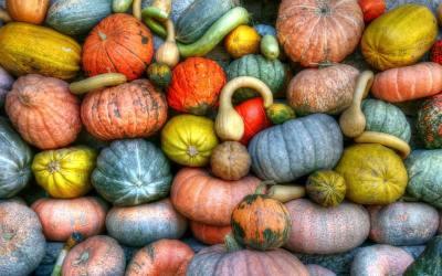 Andalucian autumn arrives.