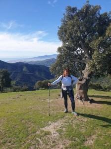 Pocopan Walking Holidays