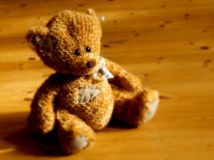 teddy-bear-1315188-640x480