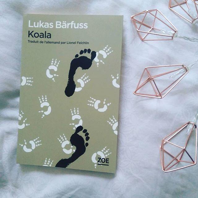 De l'histoire du suicide et de l'Australie : Koala - Lukas Bärfuss