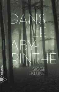 Dans le Labyrinthe - Sigge Eklund