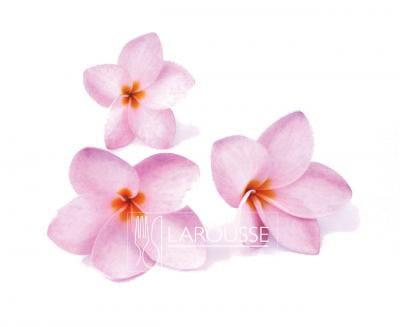 Flor de mayo definicin culinaria  Larousse Cocina