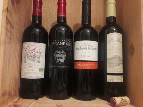 Dégustation vins bio de Bordeaux