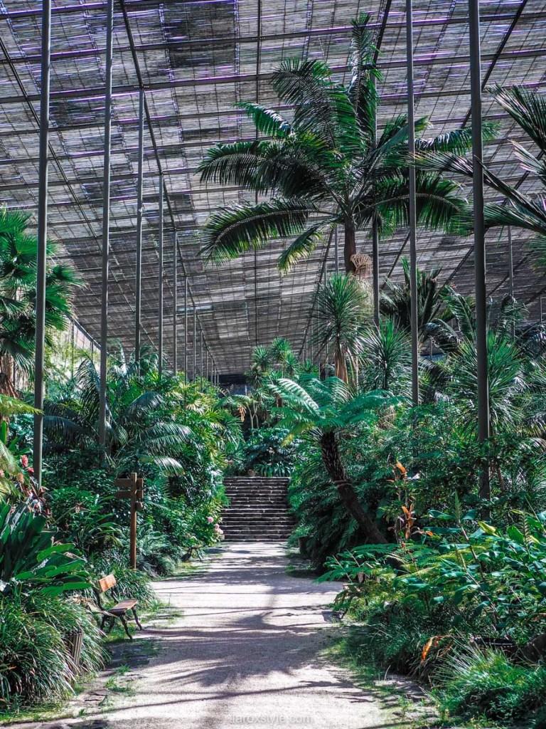 5 lieux a ne pas manquer a Lisbonne - estufa fria jardin botanique lisbonne - blog lyon-20