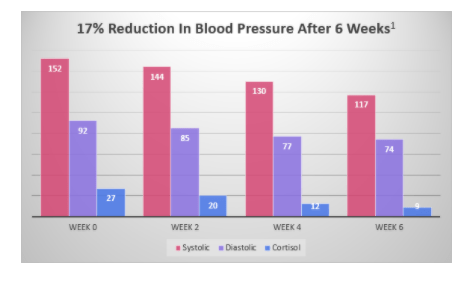 Blood Pressure Optimizer Results in Graphical Representation