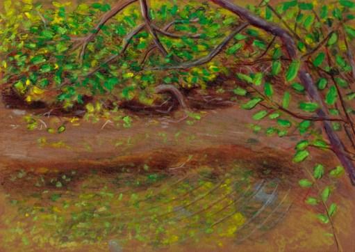 Larry Johnson artist, landscape drawing,neponset river, oil pastel, colored pencil
