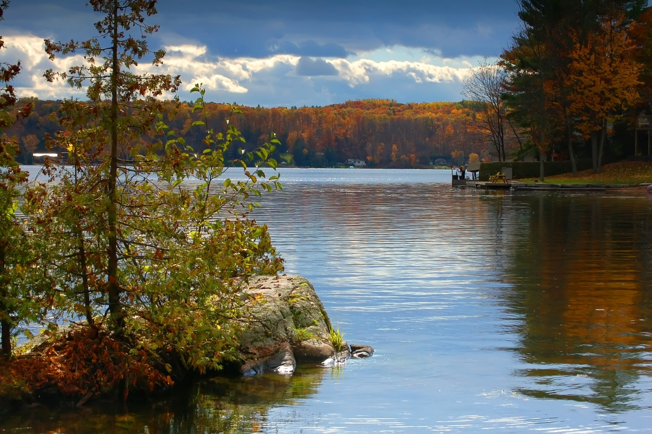 Deer Bay autumn 2 - Buckhorn ON