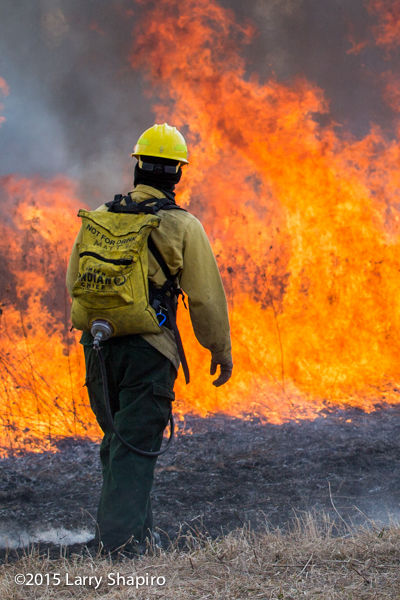 wildland firefighter with heavy flames