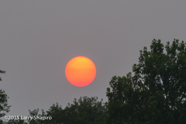 perfectly round orange sun at sunset