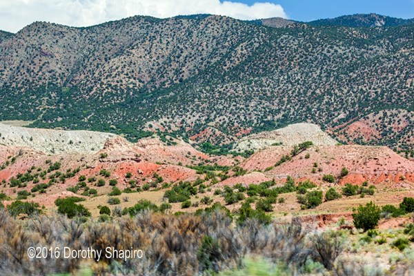 Scenic Highway 550 in New Mexico mountains