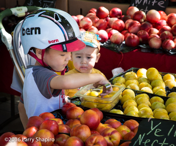 toddler with dirty face watches older brother pick fruit