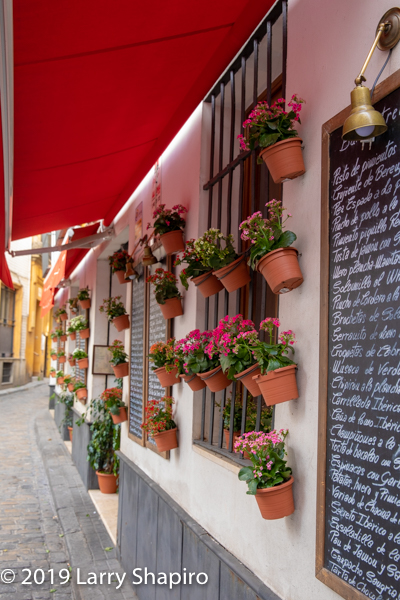 colorful flower pots on cafe wall in Seville Spain