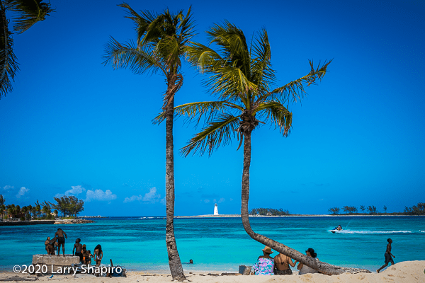 Nassau Harbour with palm trees and a lighthouse