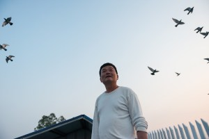 Street Photography, Asia, Taiwan, China, Photo Book, Lars Hübner, Fotograf, Nothing to Declare, Farmer, Bet, Dove Breed, Sky, Sun Down, Flying, Birds,