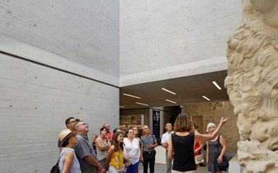 Des activités pour tous cet été au musée de Lodève !