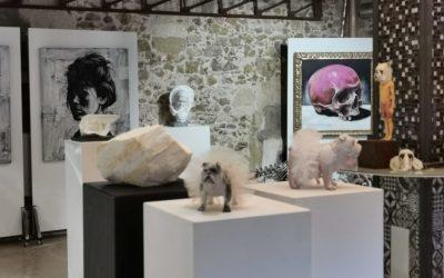 So Art Gallery : une nouvelle galerie d'art au Marché du Lez à Montpellier