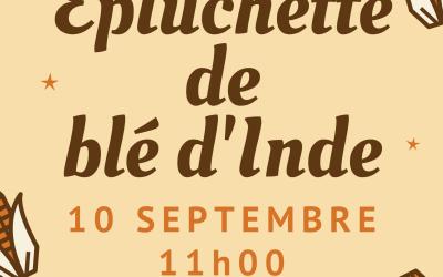 Épluchette de blé d'Inde le mardi 10 septembre !