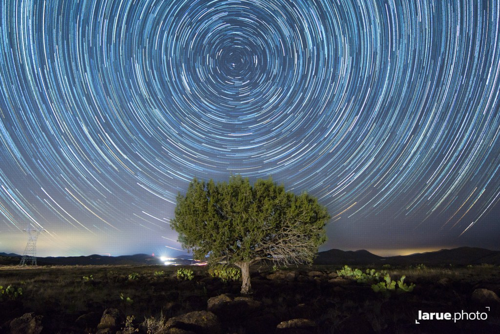 The Lone Tree with Startrails
