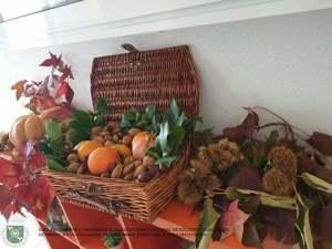 Outono na ACSSU