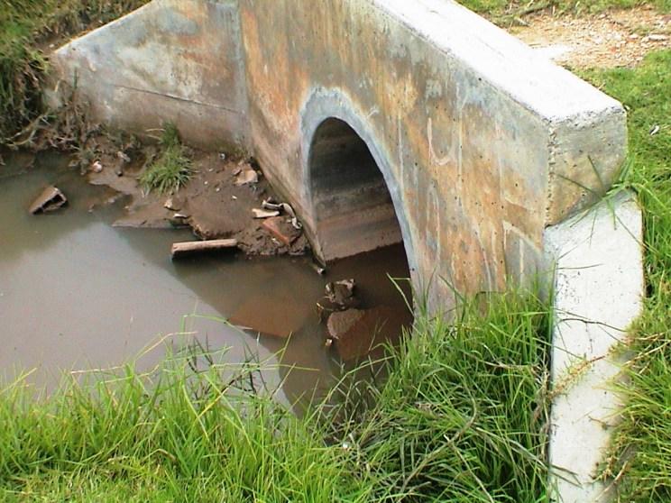 Problemáticas ambientales. Humedal Tibanica, Bogotá, Colombia año 2010