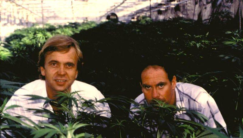 Hash Marihuana & Hemp Museum I. Las figuras de Ben Dronkers y Ed Rosenthal