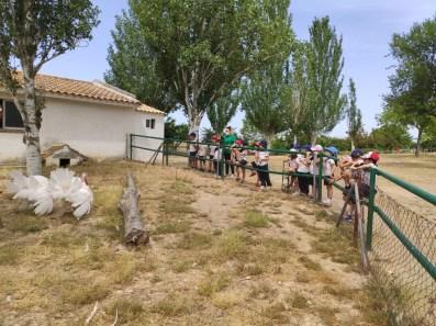 Granja 21 Escuela098