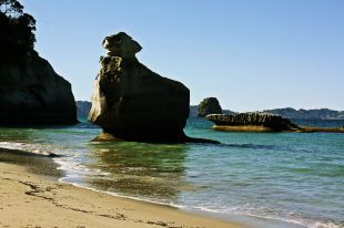 Cathedral cove 7