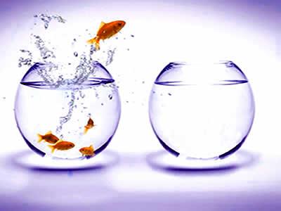 Abrace el cambio y déjese llevar