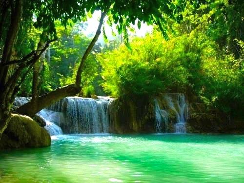 Sumérgete en el río que da vida