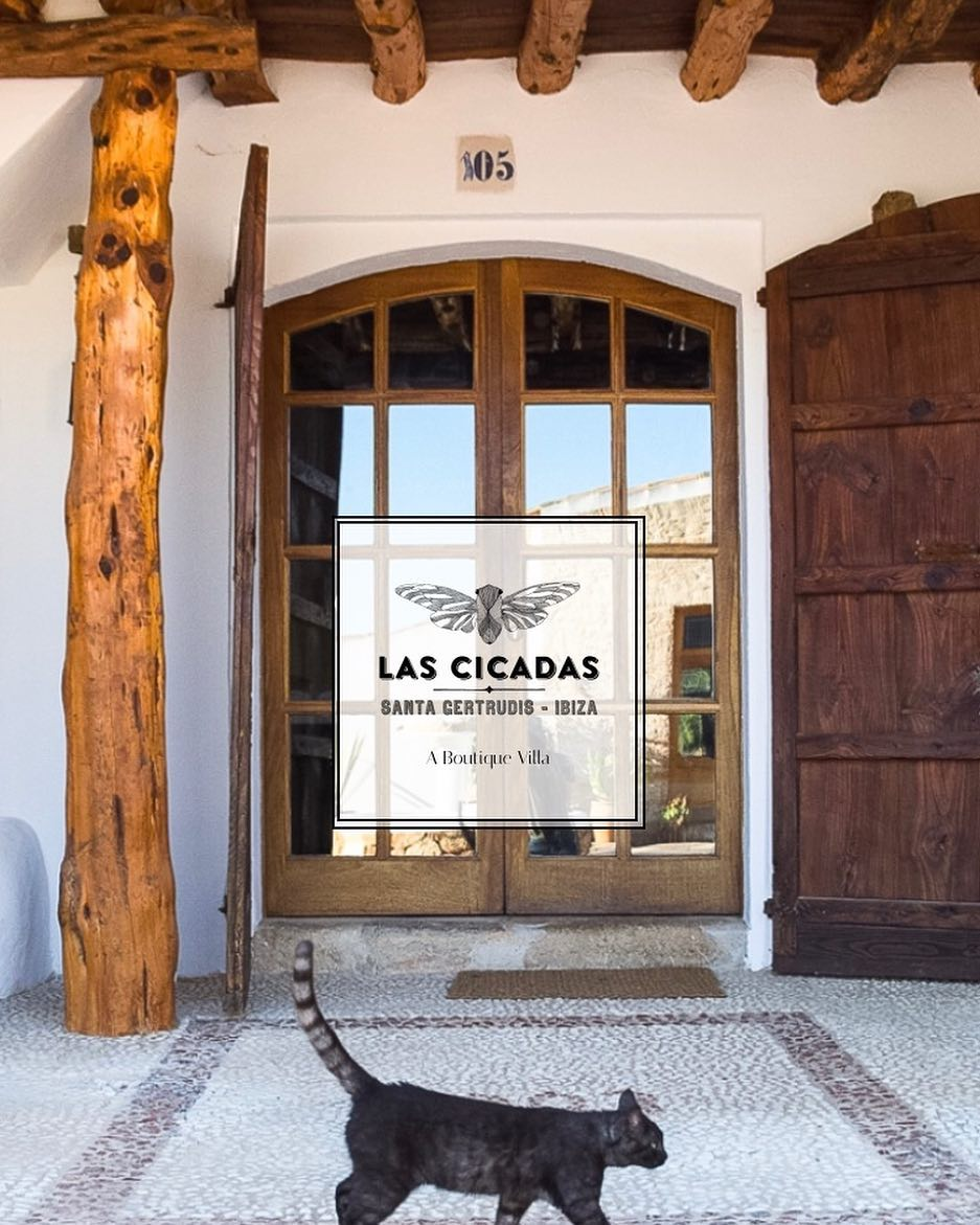 /// go to www.lascicadas.com to check out our new fresh website // also don't miss out on our special spring 20% discount for April + May dates /// #boutiquevilla #lascicadasibiza #ibiza2018 #holidayhome #villarental #vacation #destination #ibiza #spring #summer #season #rustic #interiors #stylish #finca #weddings #ibizastyle #casapayesa #homeawayfromhome 🙌🏼🌞🌵🐈