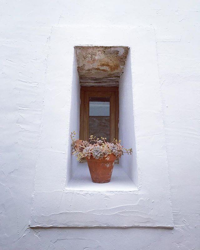 || Rustic Simplicity || #ibicenco #architecture #rustic #style #design #simplicity #casapayesa #window #mediterranean #succulents #lascicadasibiza