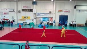 4° Taiji e Daoyin Qigong Festival a Nonantola - foto by lascimmiabianca.wordpress.com
