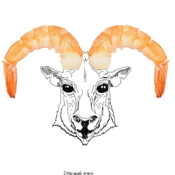 Capricorn 2015