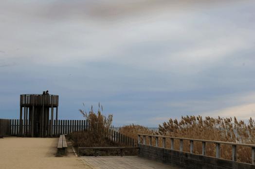 Delta del Llobregat, espacios naturales, mirador, aves, aviones, Baix Llobregat, Llobregat