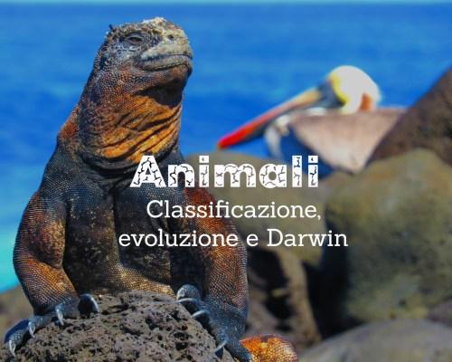 Animali: classificazione, evoluzione e Darwin