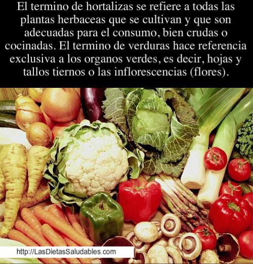 sobre las hortalizas y verduras