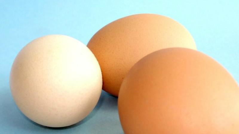 Alimentos que Debes Considera Para Tener Un Buen Desayuno Saludable