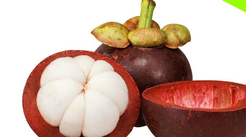 Que es el Mangostan Y Sus Beneficios Para La Salud
