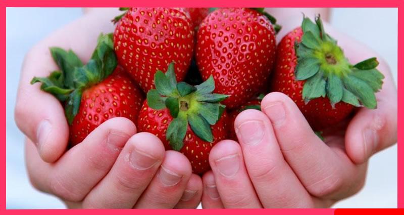 15 Frutas Que Ayudan A Bajar de Peso 2