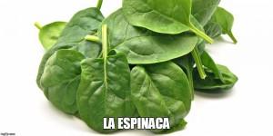 10 Super Alimentos que Ayudan a Prevenir la Inflamación del Cuerpo-las espinacas