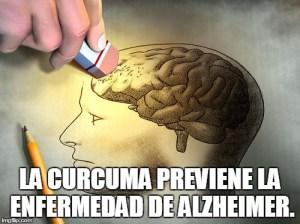 Los 10 Mejores Beneficios para la Salud de la Curcuma-alzheimer
