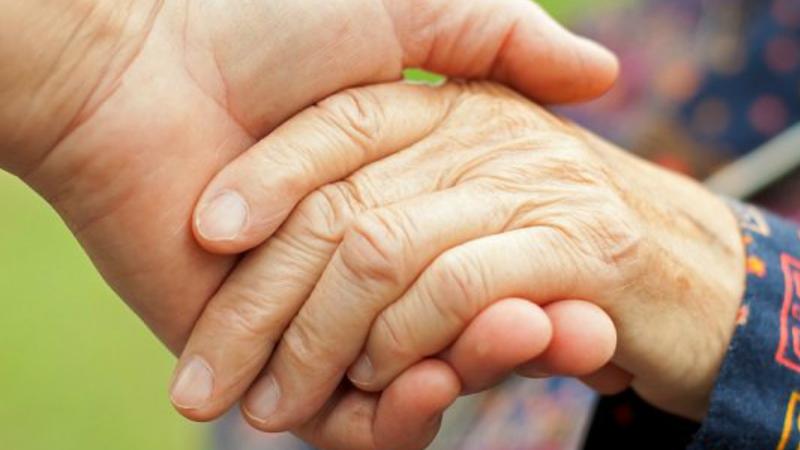 Una Dieta Para Prevenir El Parkinson