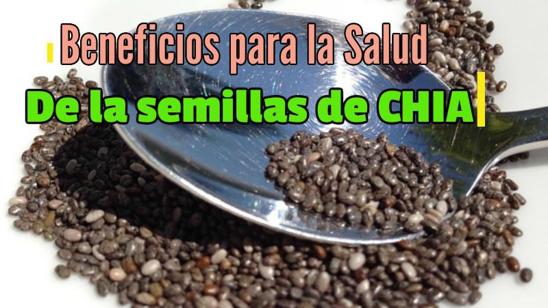 Beneficios para la salud de las semillas de chia