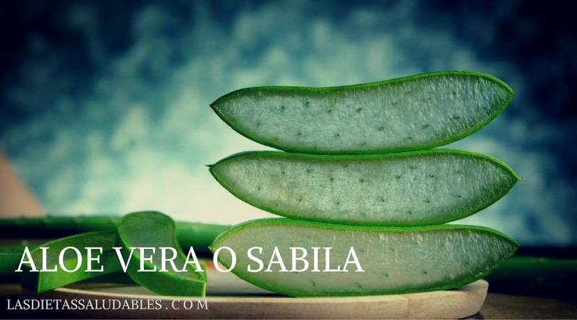 Los 10 Mejores Beneficios del Aloe Vera o Sabila