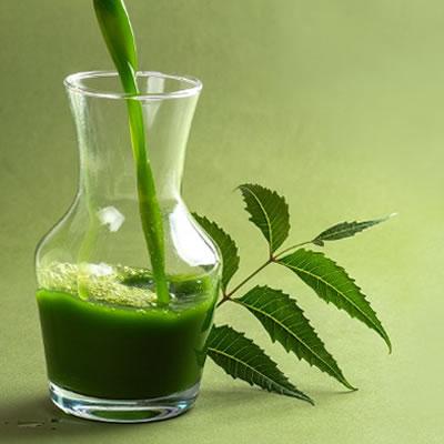 beneficos del neem